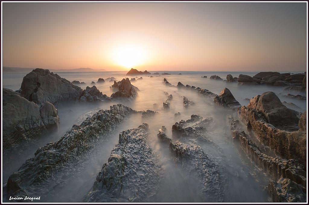 Le cimetière des dragons de mer.
