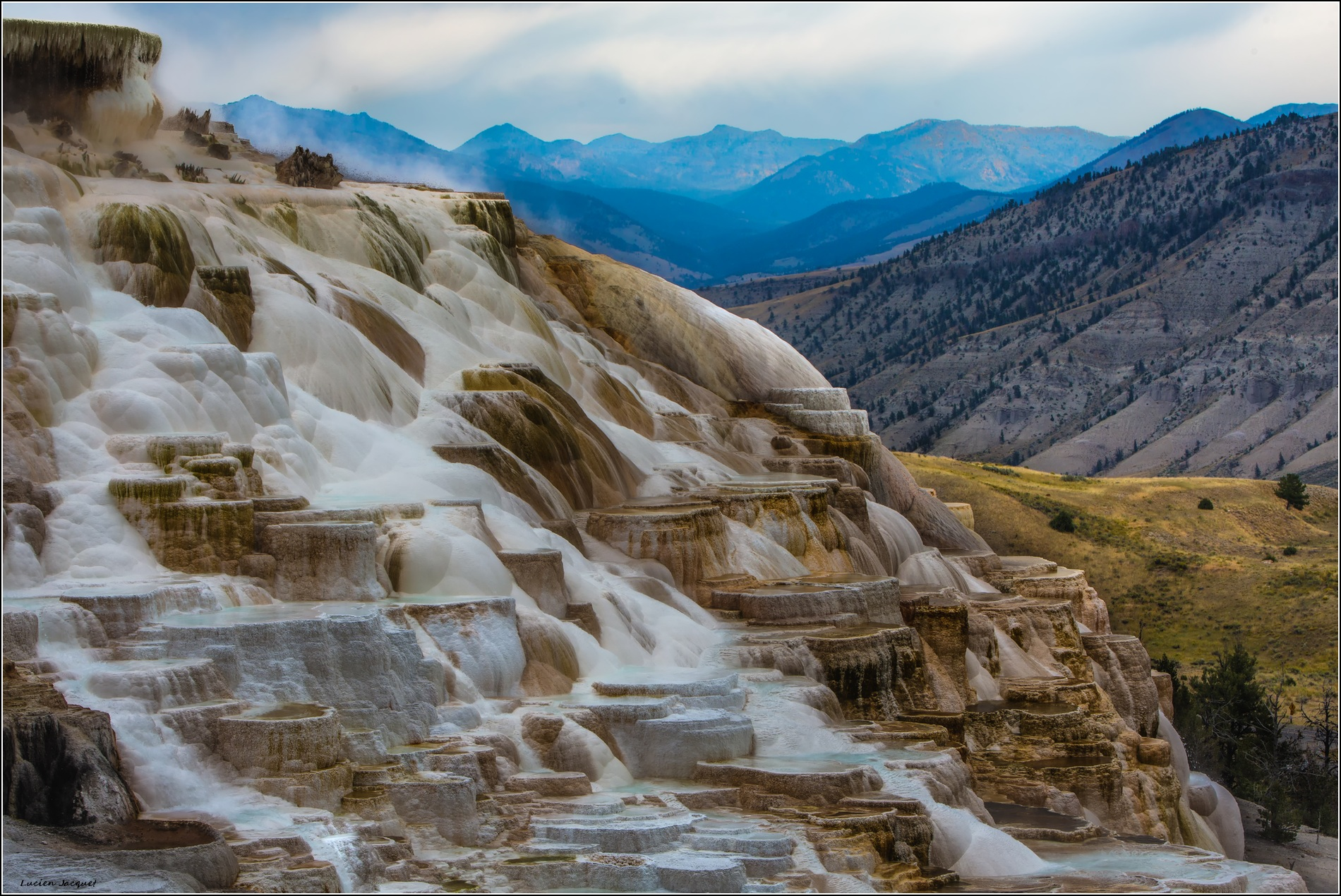Mammoth Hot Springs (détails)